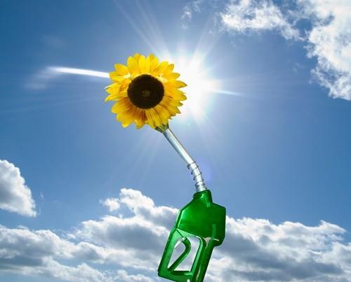 экологичное топливо